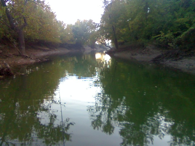 a creek in st. louis, missouri that represents a fly fishing opportunity